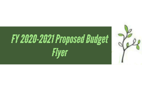 budget flyer graphic